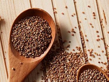全穀、無麩質的優質飲食